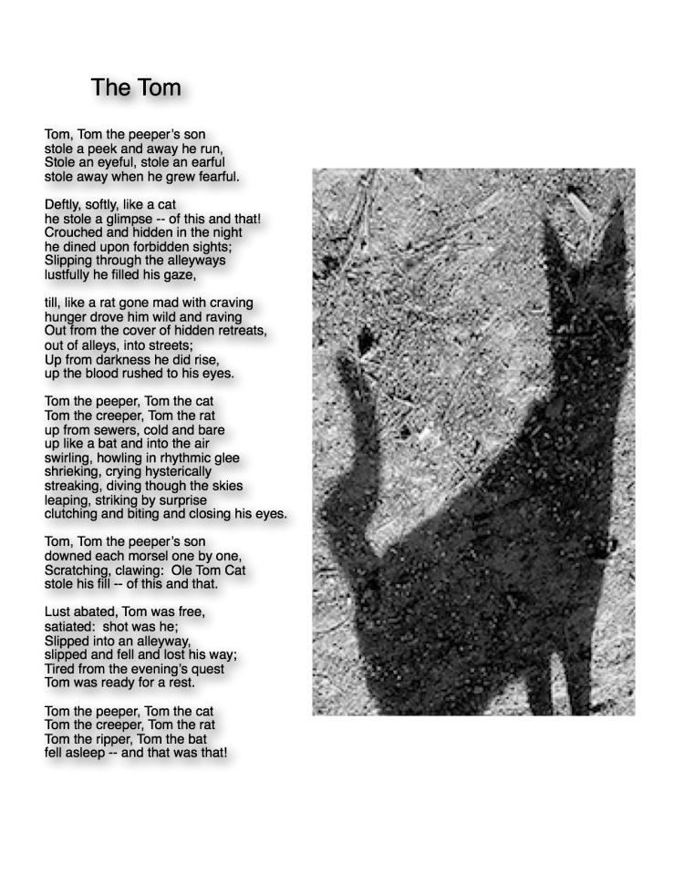 the tom shadow