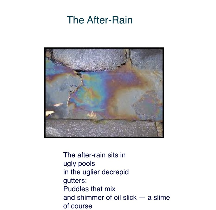After-rains1